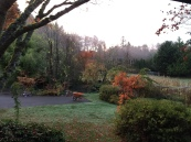 Looking out from the front porch toward the garden...its over to the left, duck pond straight ahead, orchard (not planted when this was taken in October), is through the path between them.