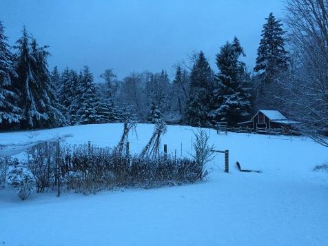 Mid-December snow.